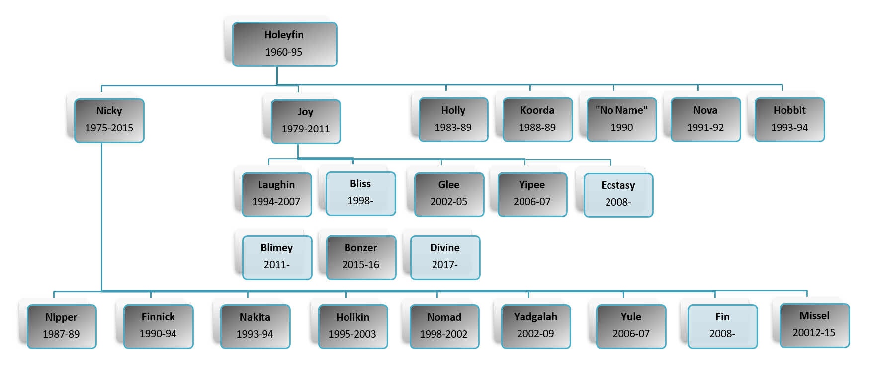 Holeyfin Lineage