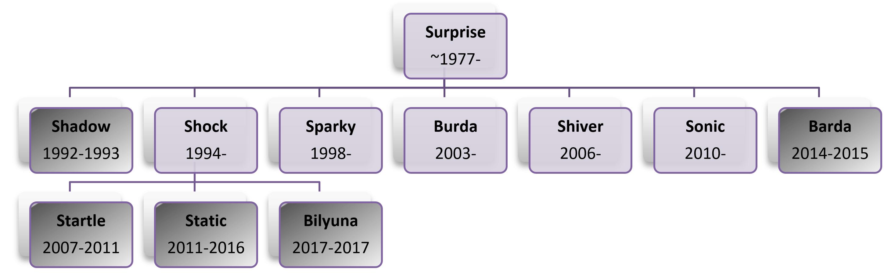 Surprise Lineage