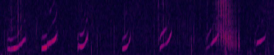 Spectrogram of Sonic whistling